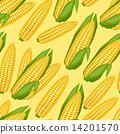 無縫的 玉米 穀物 14201570