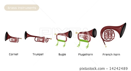 Five Brass Instrument Isolated on White Background 14242489
