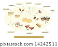 Vector - Illustration Collection of Different Sections of Percussion Table Holding Small Percussive  14242511
