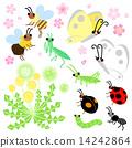 櫻花 矢量 花朵 14242864