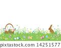 兔子 兔 事件 14251577