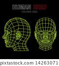 Human Polygon Head  14263071