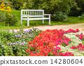 แปลงดอกไม้,ดอกไม้,สวนสาธารณะ 14280604