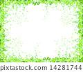 잎 신록 배경 14281744