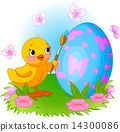Chicken is painting Easter egg 14300086