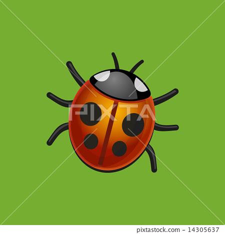 Ladybird Bug on Green Leaf. Vector. 14305637