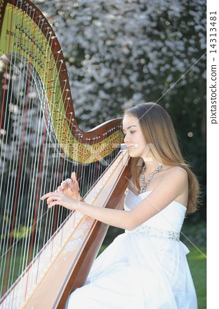 A woman playing a harp - Women who play the harp 14313481
