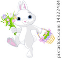Easter Bunny 14322484