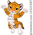 Cute tiger 14322487