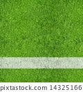 Soccer Field 14325166