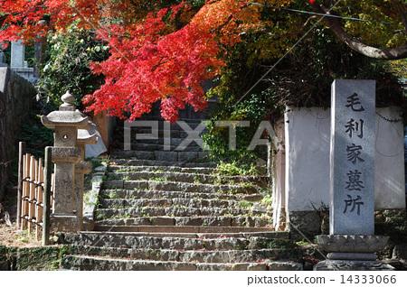 Chofu Kosanji Temple and Tomoyagi Cemetery 14333066