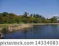 toyo, park, lake 14334083