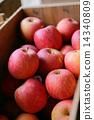 Apple 14340809