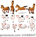 farm, animals, set 14368047
