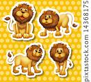 Lion set 14368175