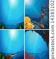 水生的 海底的 水下 14383102