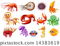 Sea animals 14383619