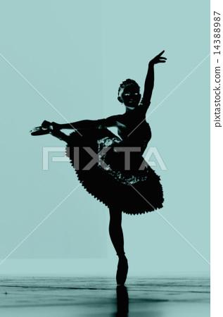 ballerina 14388987