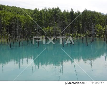 Blue pond 14408643