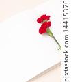 카네이션, 꽃, 플라워 14415370