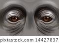 Eyes of an orangutan 14427837