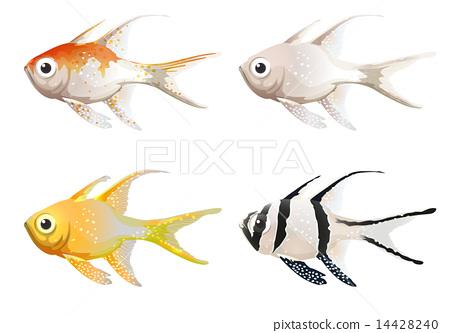 Sea creatures 14428240