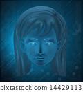 A female face 14429113