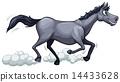 A gray horse running 14433628