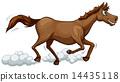 A running horse 14435118