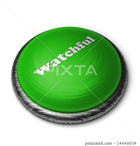watchful word on green button isolated on white 14440034