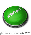 按鈕 單詞 條紋布 14442762