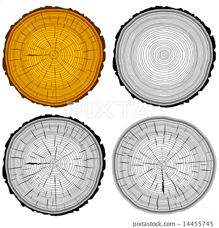 Stock Illustration: Set tree rings saw cut tree trunk background.