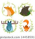 Wild Forest Animals Set 14458591