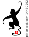 year of the monkey, monkey, monkeys 14460562