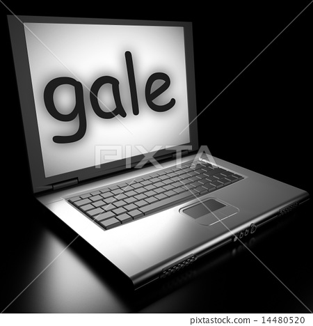 gale word on laptop 14480520