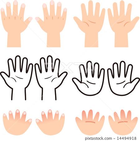 棕榈和手背 14494918