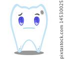 เสื่อมสภาพ,ฟัน,หมอฟัน 14530025