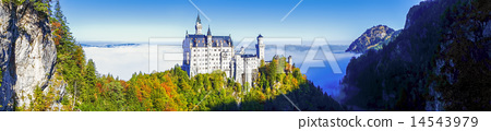 Neuschwanstein castle in Bavaria, Germany 14543979
