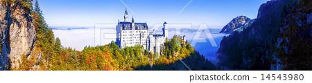 Neuschwanstein castle in Bavaria, Germany 14543980