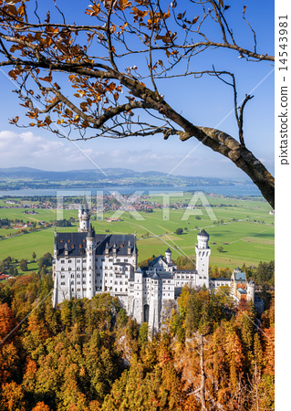 Neuschwanstein castle in Bavaria, Germany 14543981