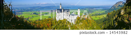 Neuschwanstein castle in Bavaria, Germany 14543982
