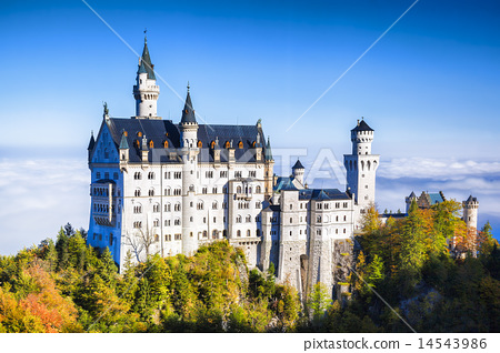 Neuschwanstein castle in Bavaria, Germany 14543986