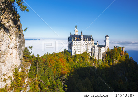 Neuschwanstein castle in Bavaria, Germany 14543987