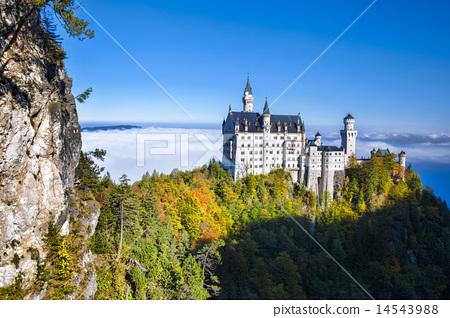 Neuschwanstein castle in Bavaria, Germany 14543988