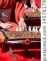 十三弦古箏 演奏 女士 14576179