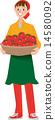 收穫的番茄 14580092