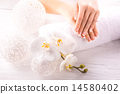 manicure, nail, orchid 14580402