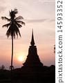 佛塔和棕櫚樹剪影 14593352