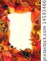框架 帧 边框 14593466