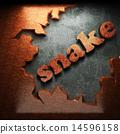 蛇 单词 木头 14596158
